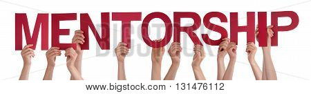 Many Caucasian People And Hands Holding Red Straight Letters Or Characters Building The Isolated English Word Mentorship On White Background