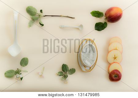apple, apple-tree branch, flowers, old gravy boat and ice on a white background