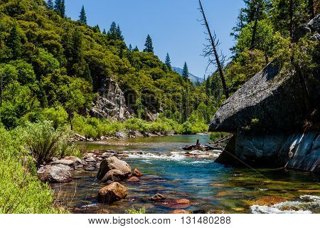 Redwood Creek, Highway 180, Kings Canyon National Park, California, Usa