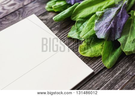 Fresh leaves of sorrel on wooden background. Rustic table with green and violet edible leaves. Place for text. Recipe book.