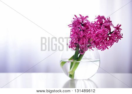 Hyacinth flowers on table in a vase
