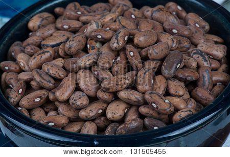Rattlesnake Beans Isolated in a dark blue bowl.