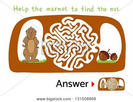 Maze puzzle for kids with Marmot and Nut. Labyrinth illustration, solution included.