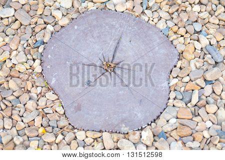 walking wood on ground stone in garden