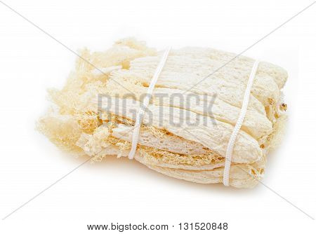Tropical Stinkhorn mushroom Phallus indusiatus isolated on white background.