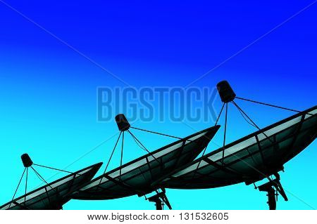 Satellite dish transmission data tree sattellite dish