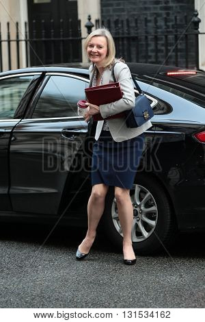 LONDON, UK - FEBRUARY 2, 2016: Liz Truss Secretary of State for Environment Food and Rural Affairs seen at Downing Street