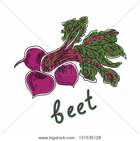 Set beets with green leaves isolated on white background, vector