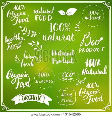 Natural food. Hand drawn lettering on colorful blurred background. Design elements for logo label badge emblem sign.