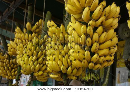 Bananas hanging in a market
