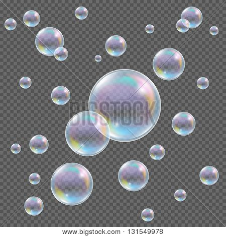 Soap bubbles on transparent background. Realistic transparent vector soap bubbles with rainbow reflection and glares on checkered background