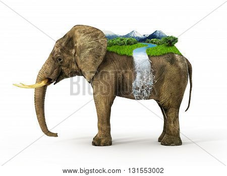 Concept of stability. Untouched nature on the african elephant's back isolated on white background.