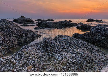 Sunset scene on beach rock, Beach scene.