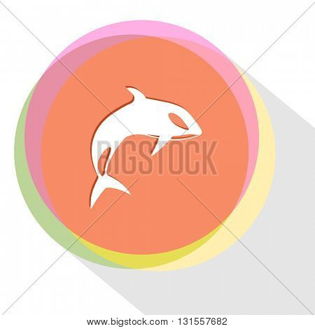 killer whale. Internet template. Vector icon.