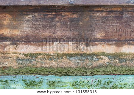 Wood and moss Background or texture  ; ;