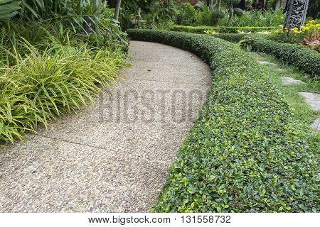 Road in the garden or stone way into garden
