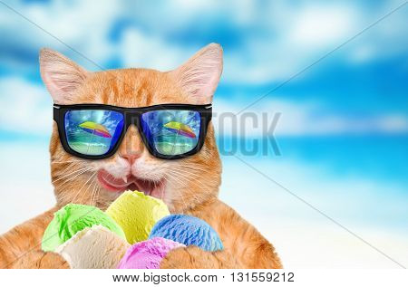 Cat wearing sunglasses relaxing in the sea background.