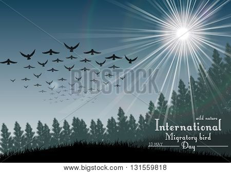 Vector illustration of Birds migratory day with palm tree and sunlight