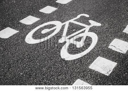Bicycle Lane. White Road Marking