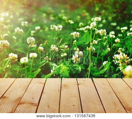 St.Patrick's day background with old empty wooden table and field of clover