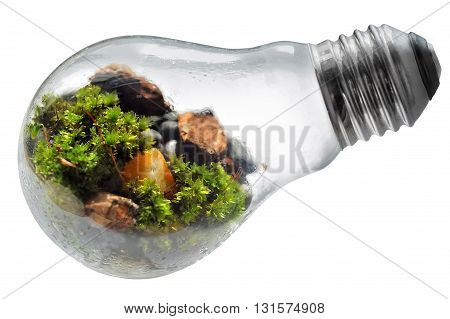 Happy Earth Day light bulb illustration isolated background