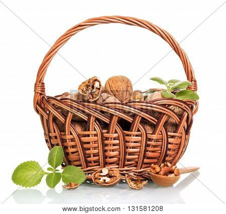 Walnuts in a wicker basket and a wooden spoon with kernels isolated on white background.