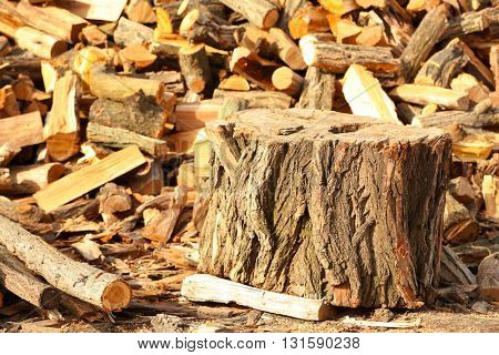 Stump with chopped firewood