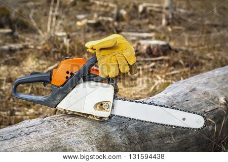 Chainsaw and gloves on tree in destroyed forest