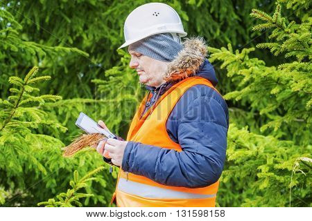 Forest worker with withered branch and tablet PC