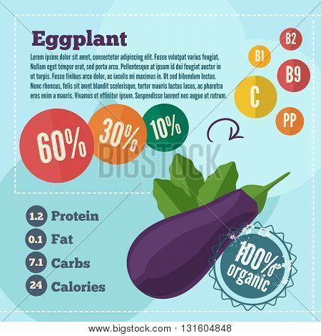 Eggplant infographics and vitamins in a flat style. Vector illustration. EPS 10