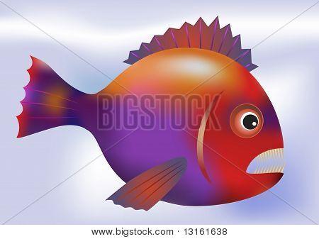 Big Predatory Fish - Vector
