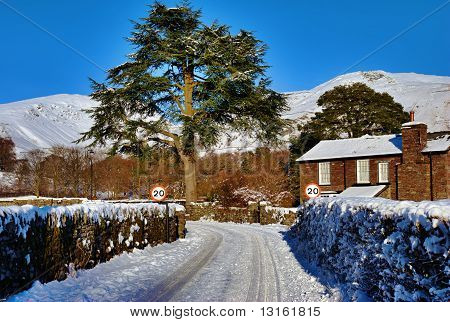 House, Tree, And Snow Covered Lane
