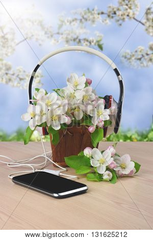Smartphone and headphones on a wooden background. Spring Melody. Inspiration. Life style. Youth. Relaxation. Listen to music. Blooming apple tree in a wooden basket. Spring mood.