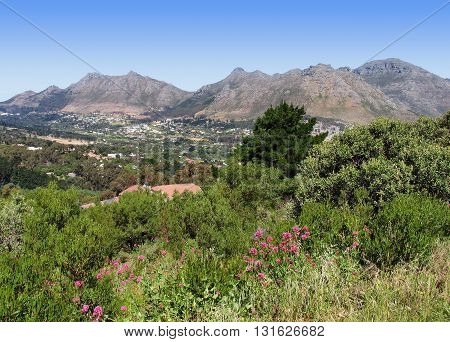 Houtbay Valley, Mountains In Back Ground,  Cape Town South Africa 01