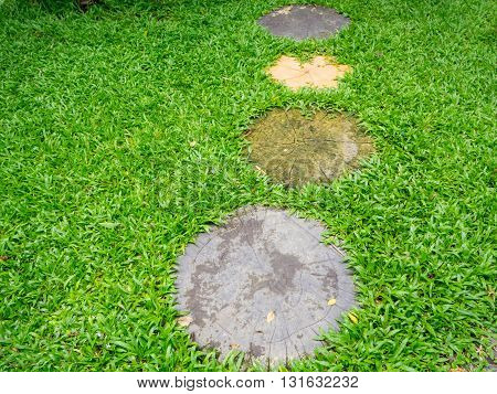 Stone walkway on green grass floor in garden