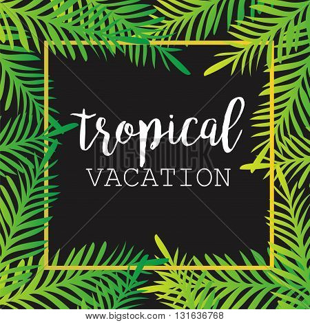 Summer tropical background of palm leaves. tropics tropical palm trees tropical palm leaves. Tropical vacation. Summer Background. Square Frame. Vector Illustration.