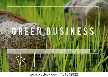 Rice farmers in Malaysia Green Concept