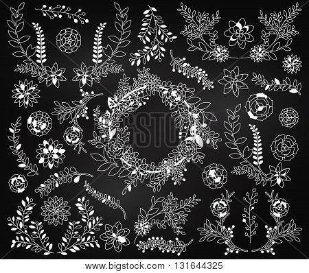 Chalkboard Vector Set of Detailed Succulent Plants, Cactus and Succulent Wreath