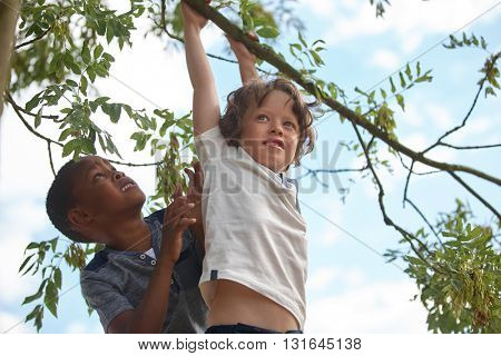 Two kids on a tree climbing and helping each other