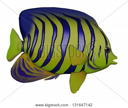 Angelfish isolated in white background - 3D render
