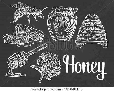 Honey set. Jars of honey bee hive clover honeycomb. Vector vintage engraved illustration. Isolated on black background.