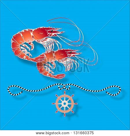 Vector illustration with isolated shrimps and nautical design elements helm, rope  on blue background.
