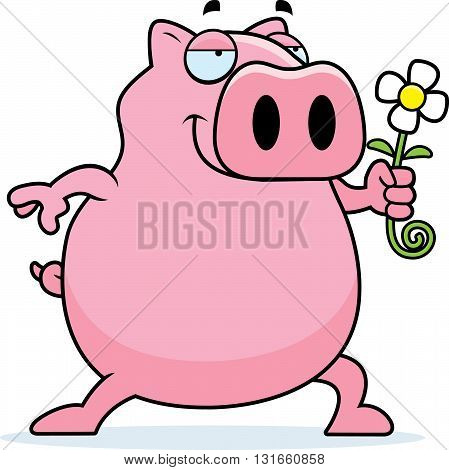 Pig Flower