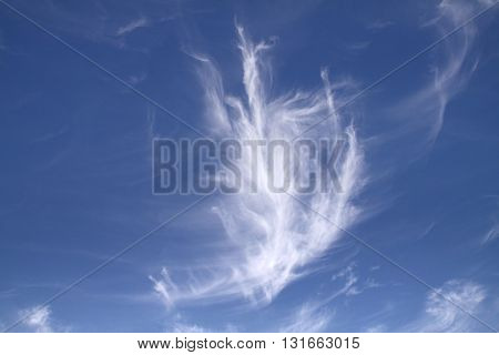 Blue sky with light cloud on summer day