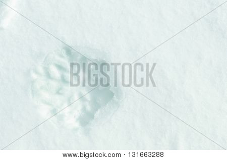 Beautiful snowflake shape on natural snowdrift, close up