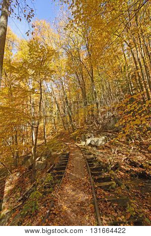 Old Railway in the Fall Forest along the Blue Ridge Parkway in Virginia