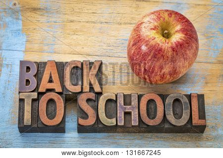 back to school sign - word abstract in vintage, letterpress wood type blocks with a fresh apple