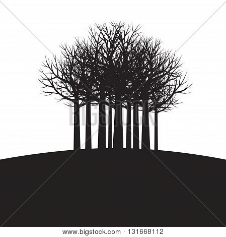 Shape of black trees and roots. Vector Illustration.