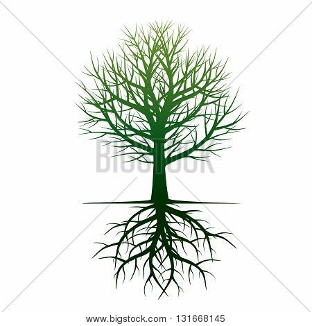 Shape of Green Tree. Vector Illustration and Graphic elements.