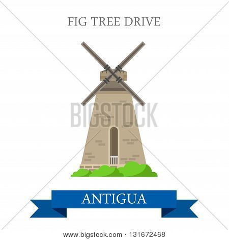 Fig Tree Drive in Antigua vector flat attraction landmarks